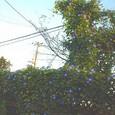 2005112